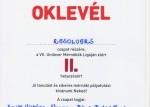 VII. Unilever Mérnökök Ligája